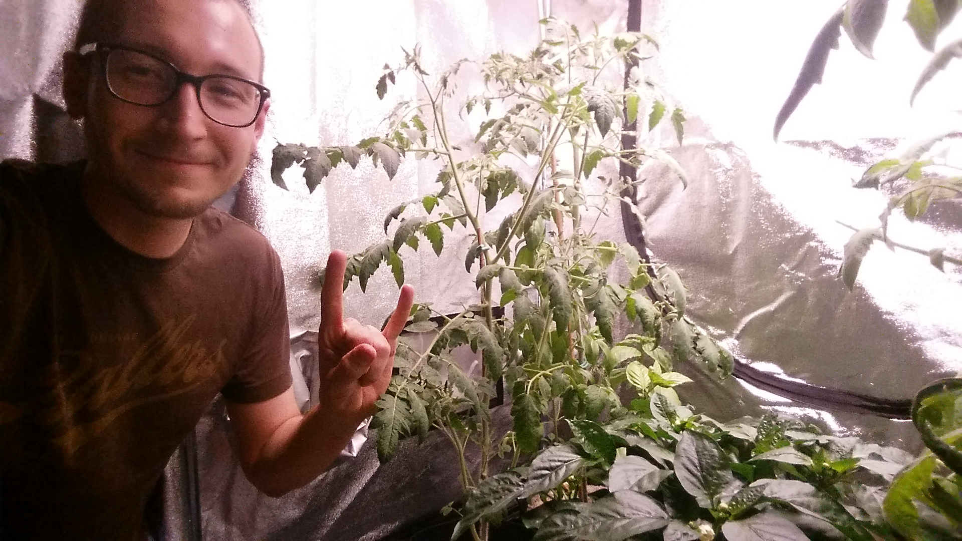 3 Easy Tips] How to Fix your LED Spectrum for Flowering